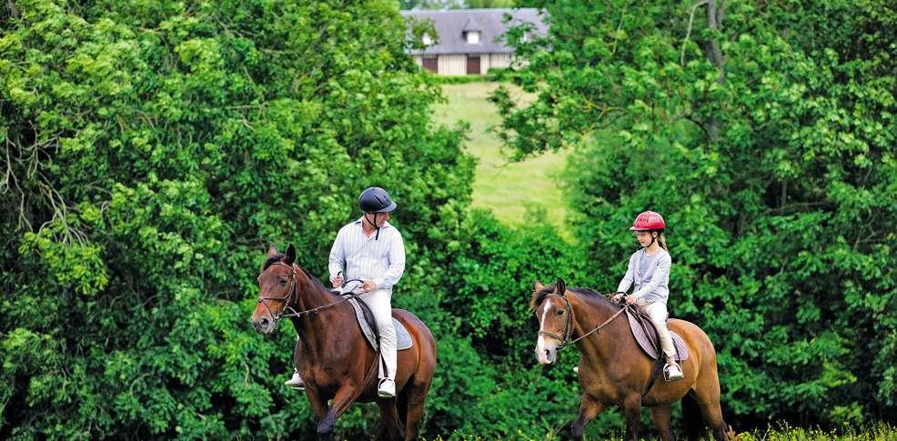 La equitación como deporte saludable
